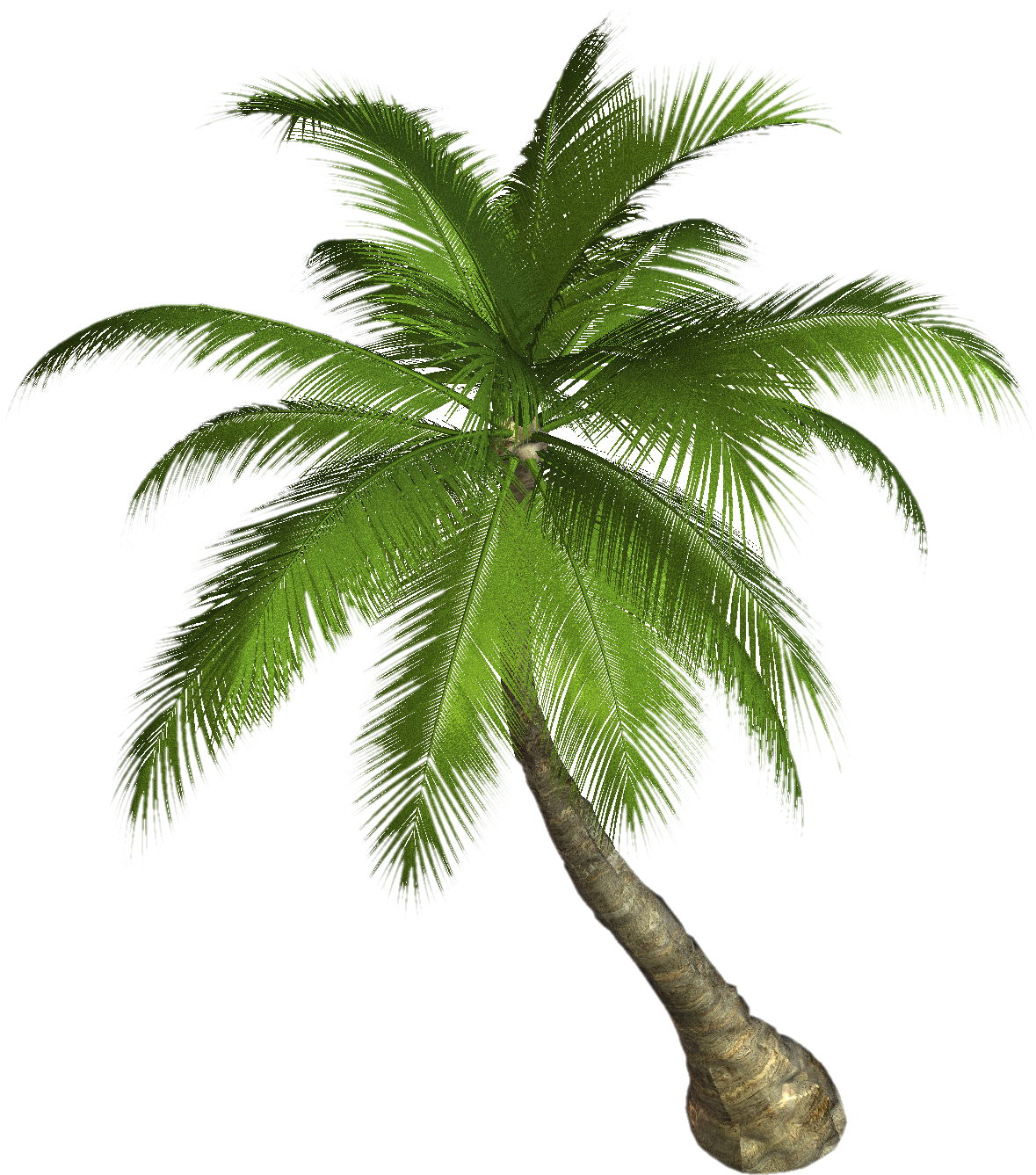 Palm clipart pineapple. Tree twenty three isolated