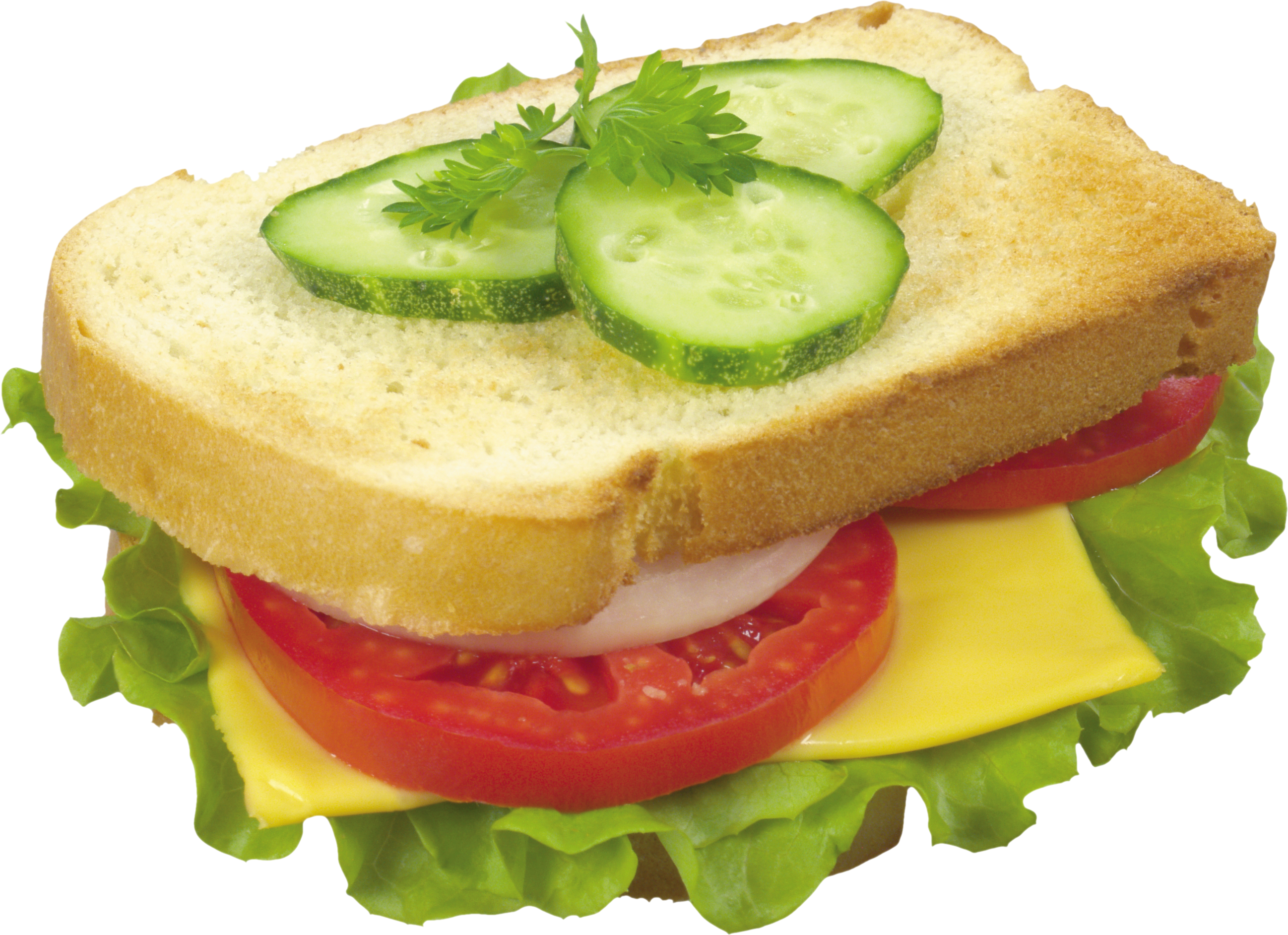 Thirty three isolated stock. Water clipart sandwich