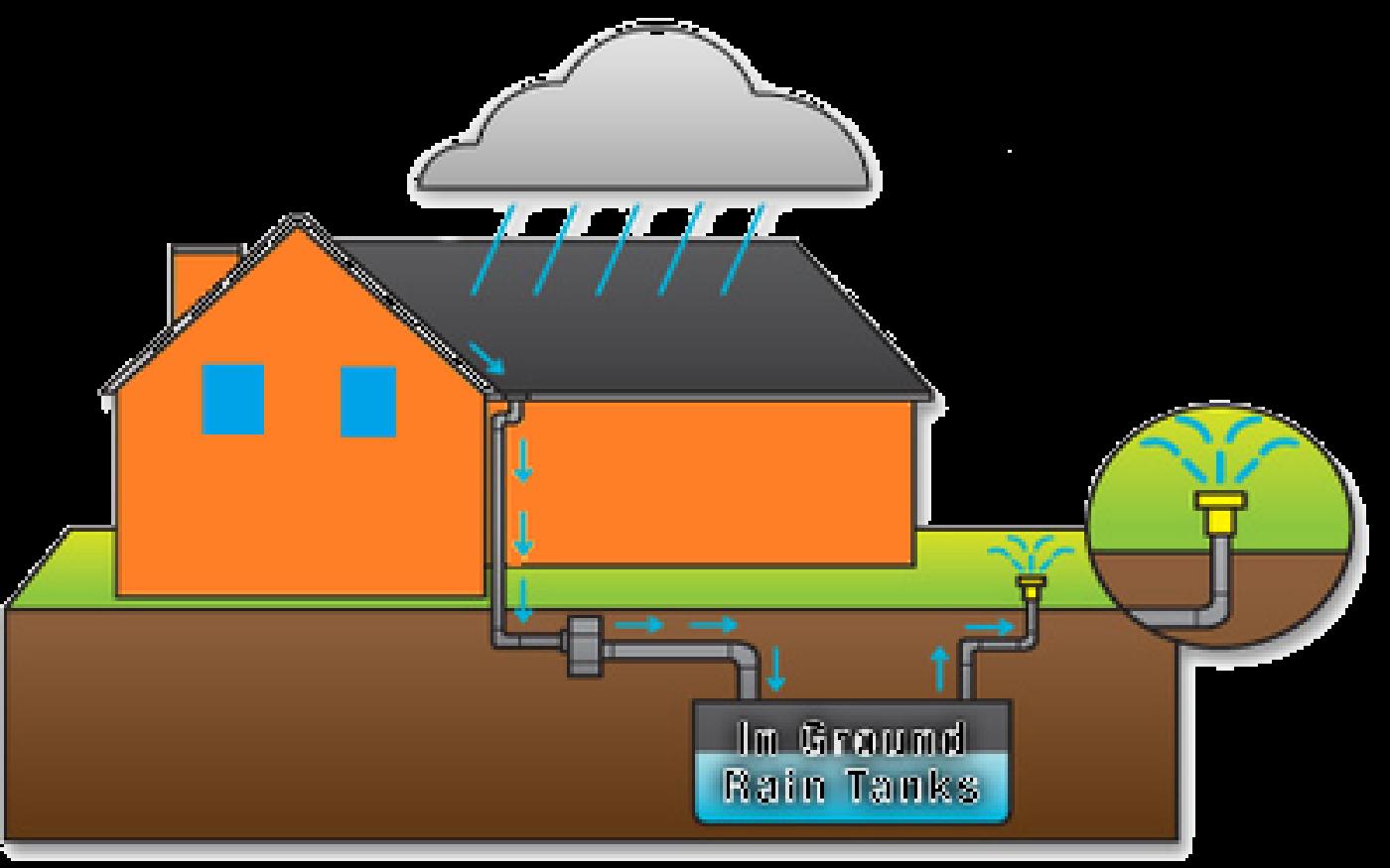 Rain water harvesting homework. Wheat clipart animated