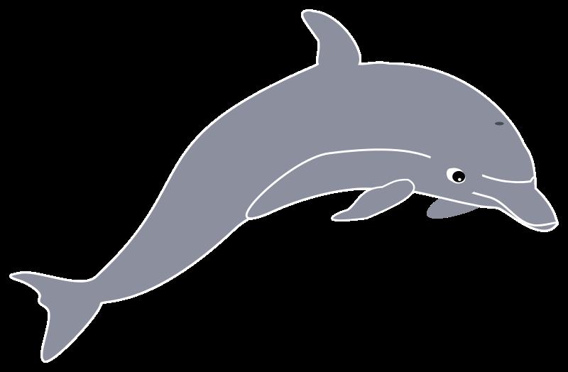 Purple clipart dolphin. Free clip art bay
