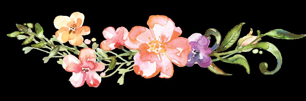 Flower divider png. Jimmy kat web flippedpng