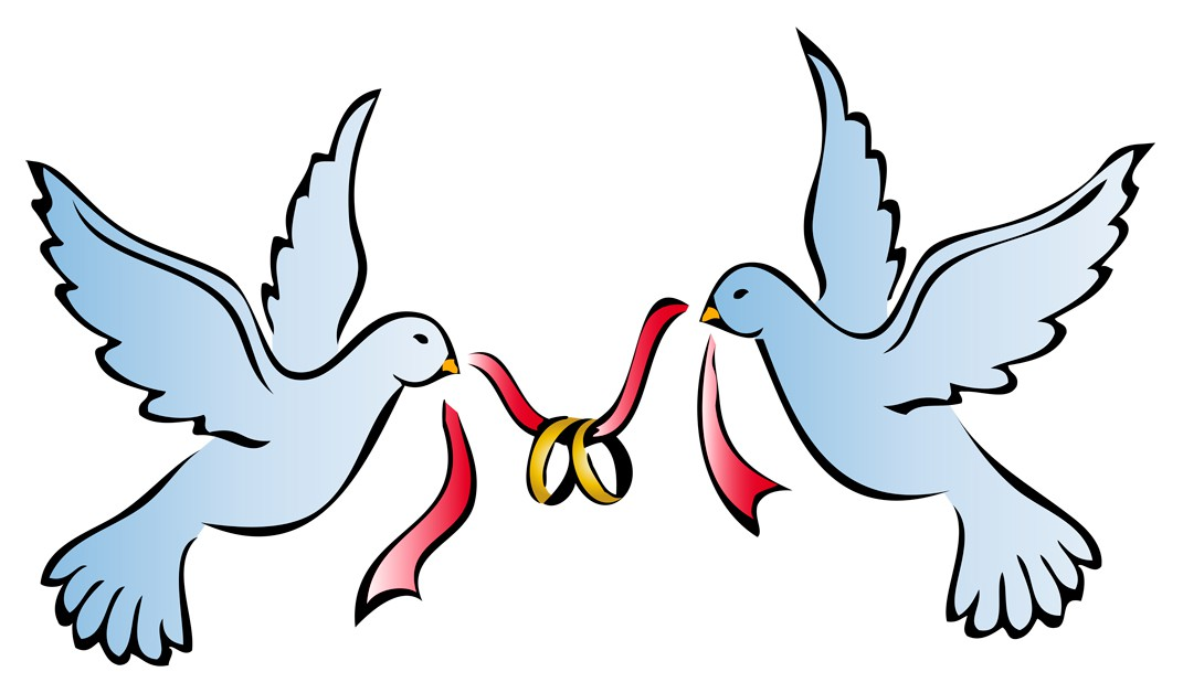 Wedding dove x making. Doves clipart bridal