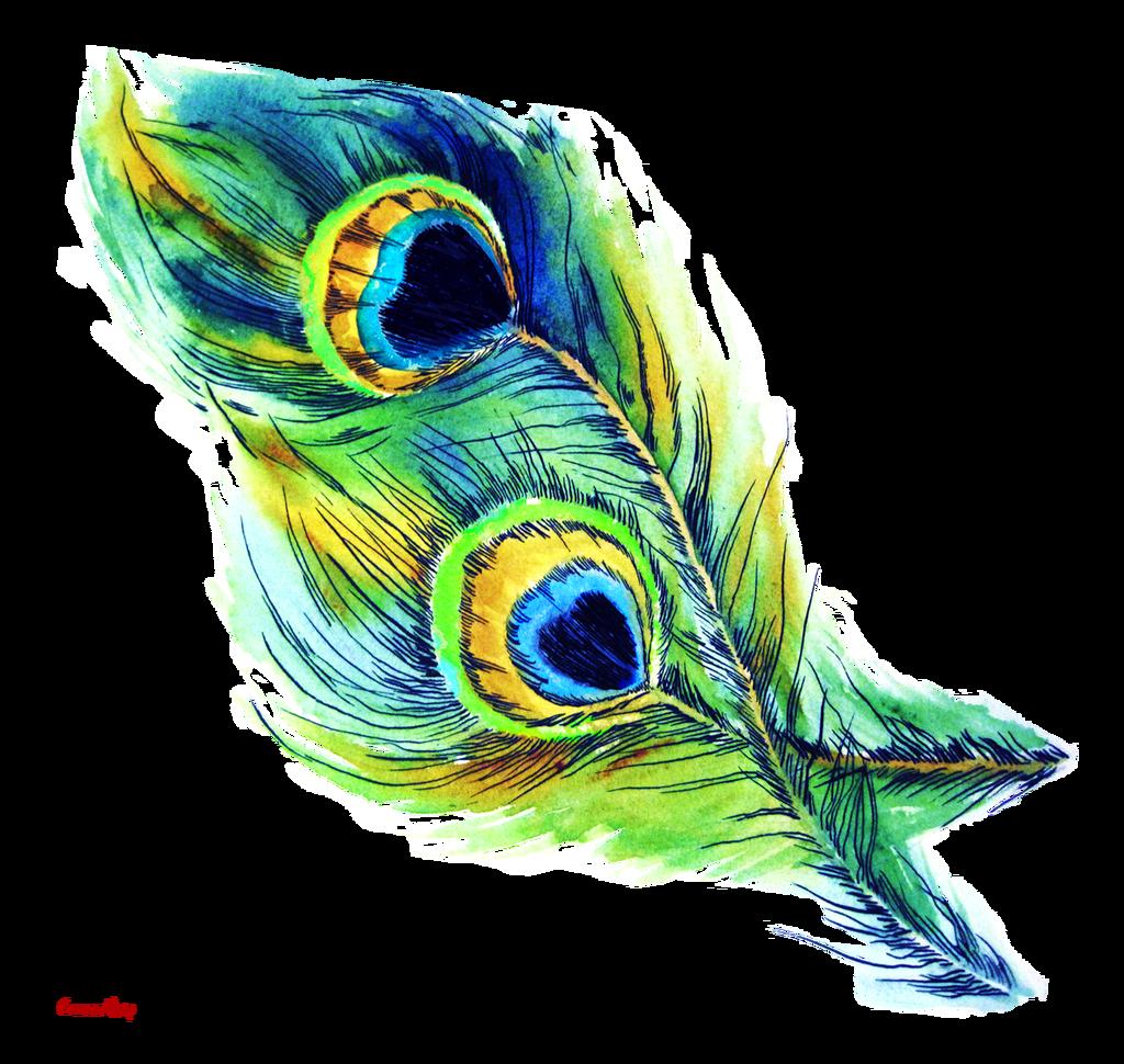I wp com crossmap. Clipart wedding peacock