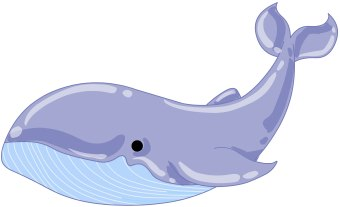 Free cliparts download clip. Dolphin clipart whale