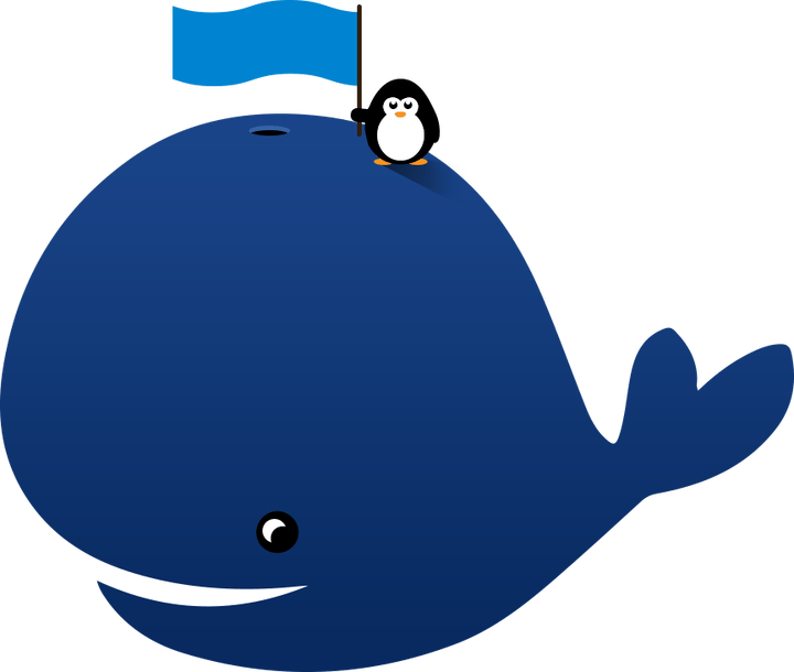 Animated images secondtofirst com. Clipart whale animation