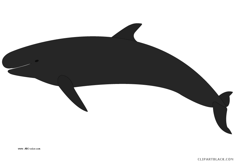 Orca clipart drawing. Whale page of clipartblack