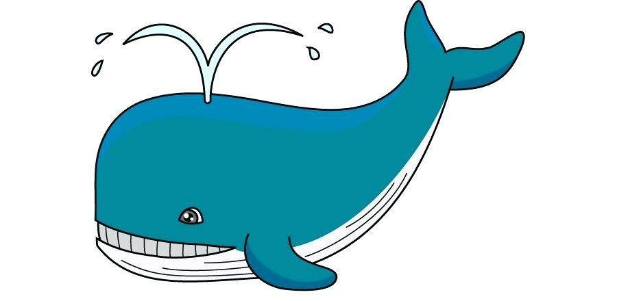 Collection of free download. Clipart whale blue object