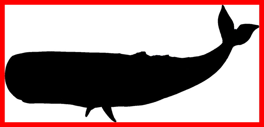 Clipart whale colouring page. Incredible humpback coloring library