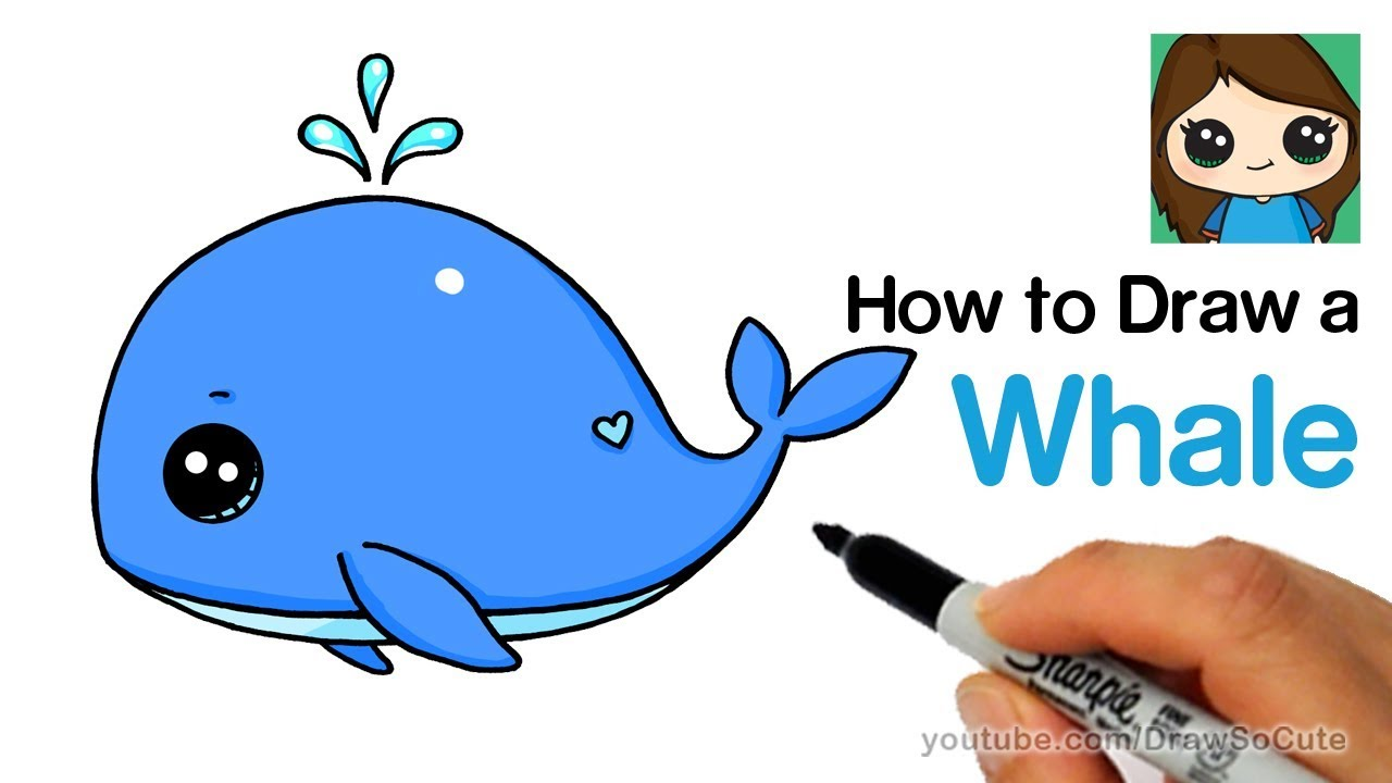 How to draw a. Clipart whale easy cartoon