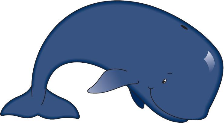 Clipart whale kid. Baby killer whales clipartbarn