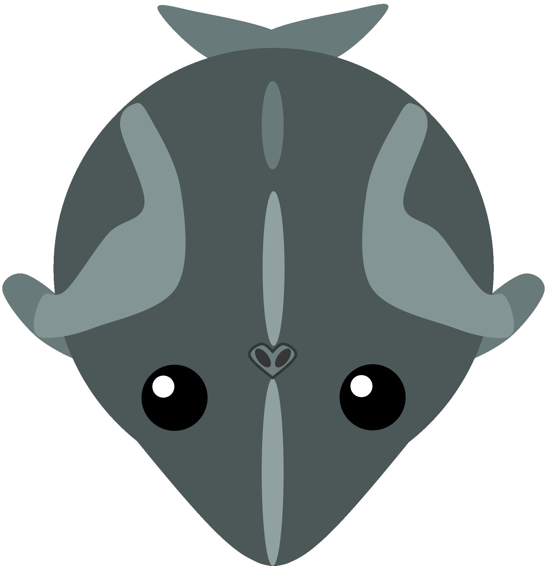 Mopeio artisticminke . Clipart whale minke whale