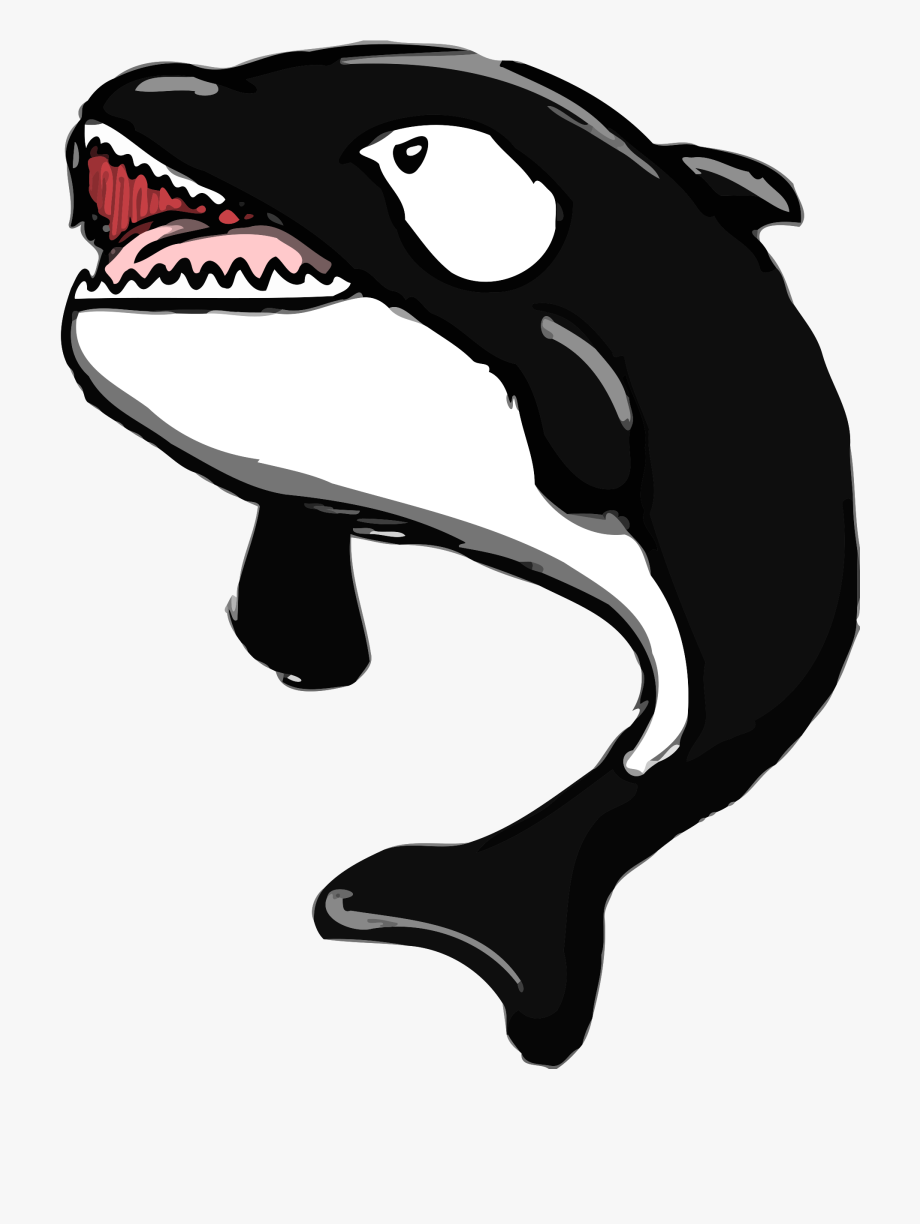 Png cliparts cartoons jing. Clipart whale open mouth