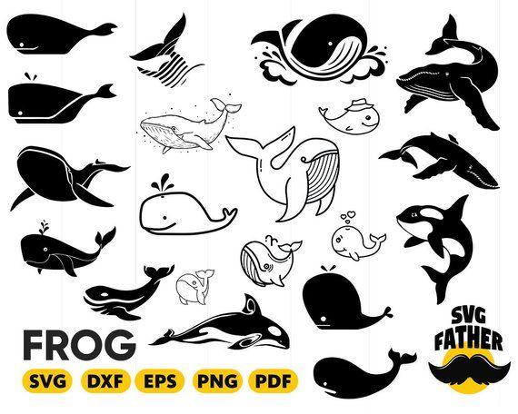 Svg monogram . Clipart whale pdf