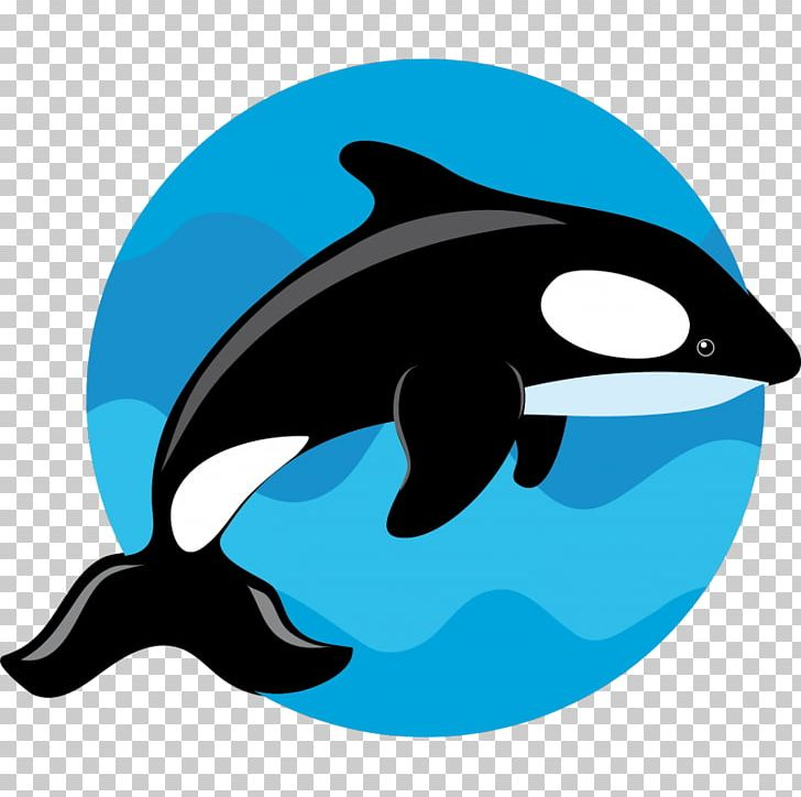 Clipart whale porpoise. Common bottlenose dolphin killer