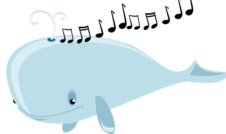 Why do whales sing. Clipart whale real whale