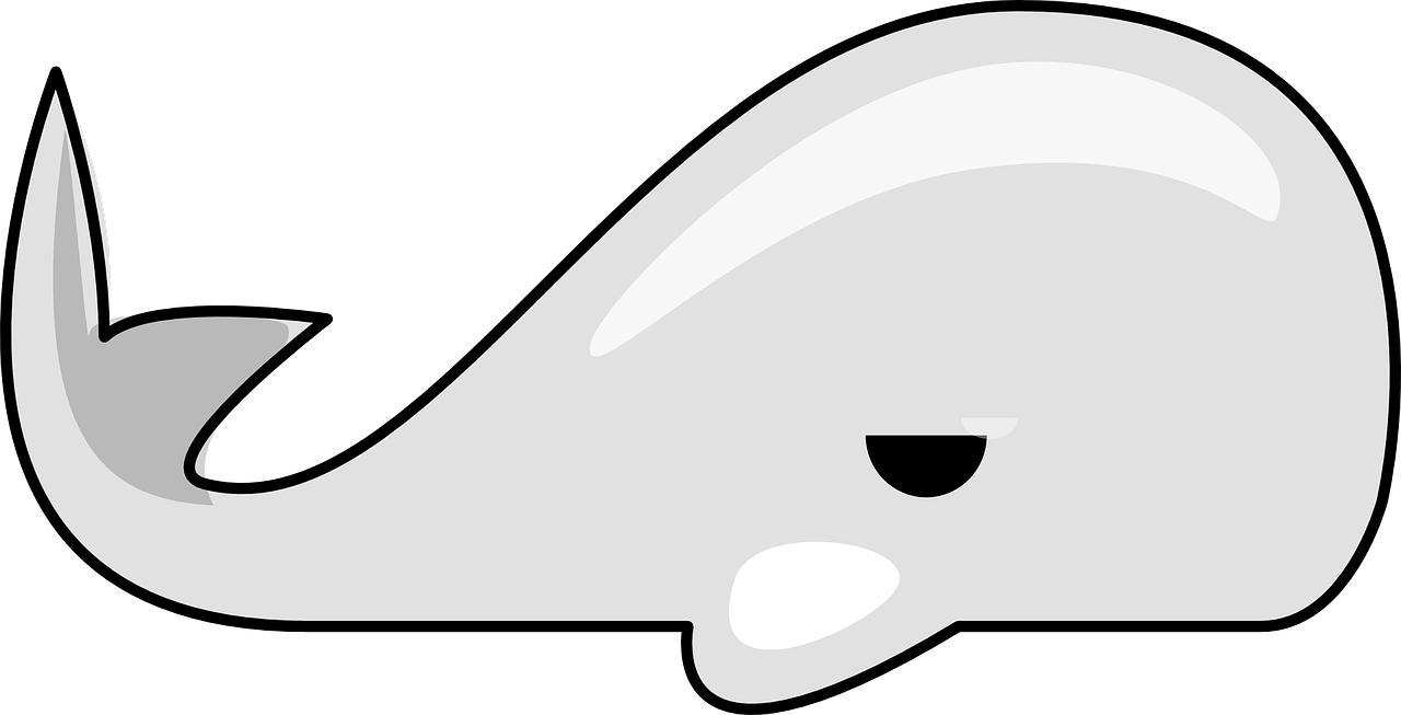 Clipart whale stencil. How to draw a