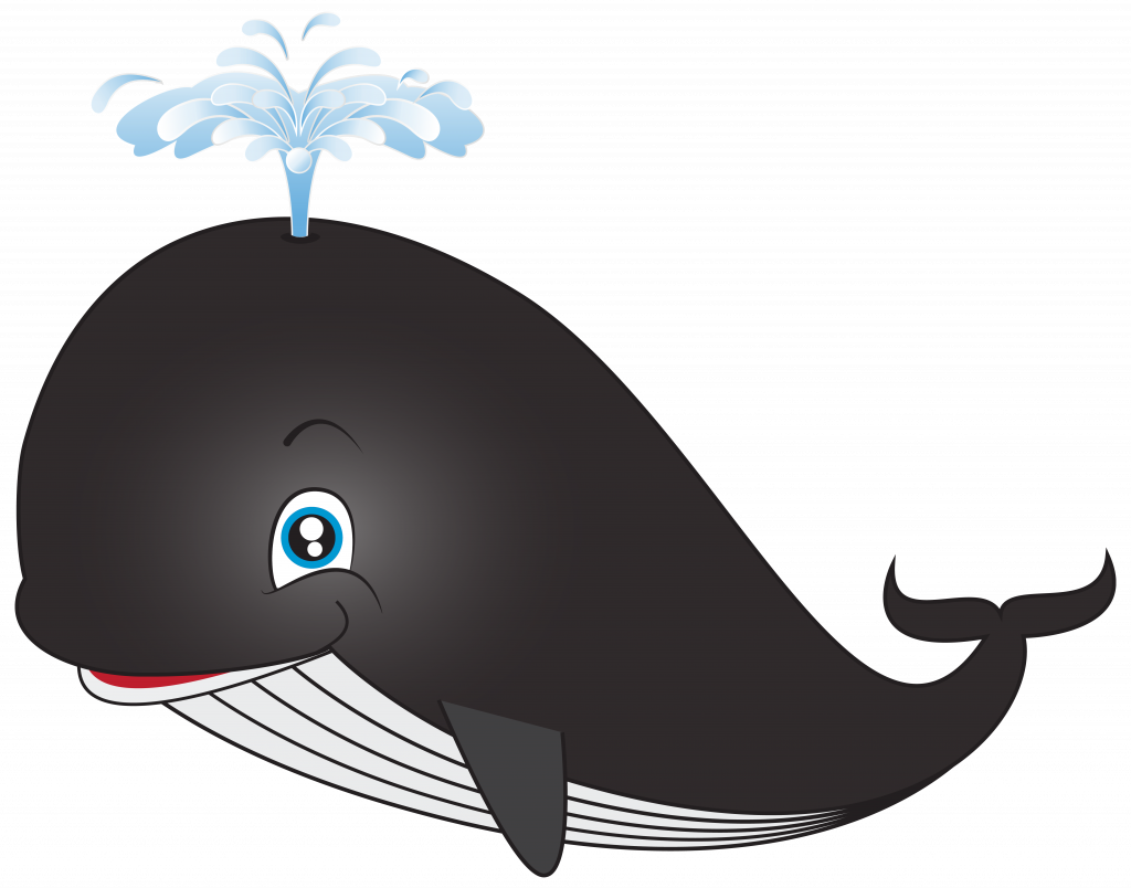 Cartoon pictures of whales. Clipart whale swim