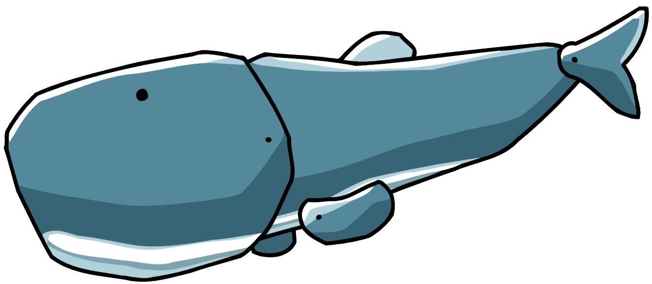 Clipart whale teal. Sperm scribblenauts wiki fandom