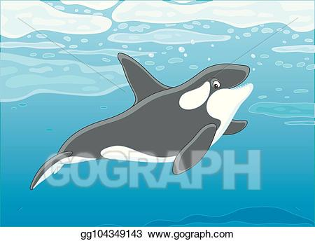 Clipart whale whale swimming. Vector art killer in
