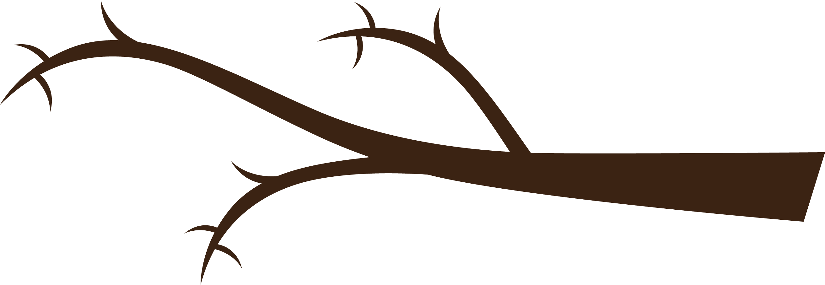 Branch clipart tree limb.  collection of png
