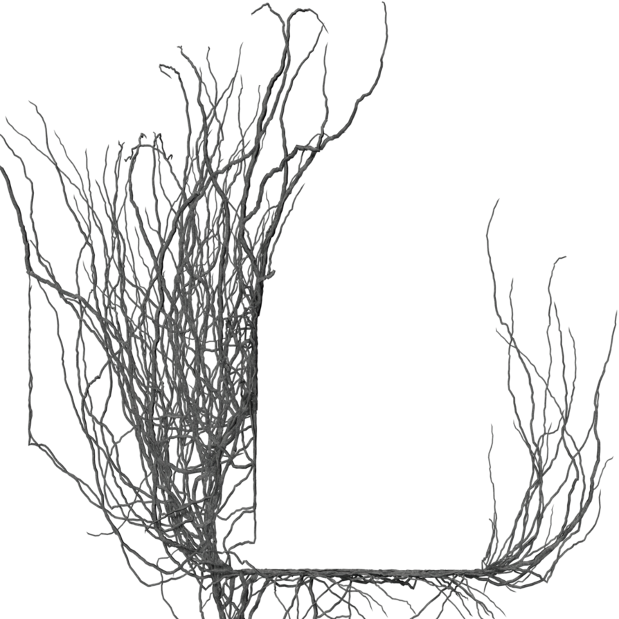 Frame by brokenwing dstock. Clipart winter branch