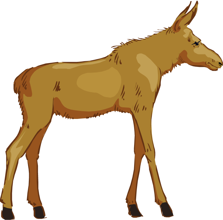 Free . Winter clipart moose