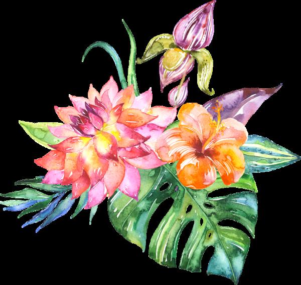 Clipart winter watercolor. Fleurs flores flowers bloemen