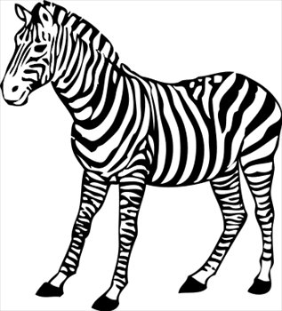 Clipart zebra. Free graphics images and