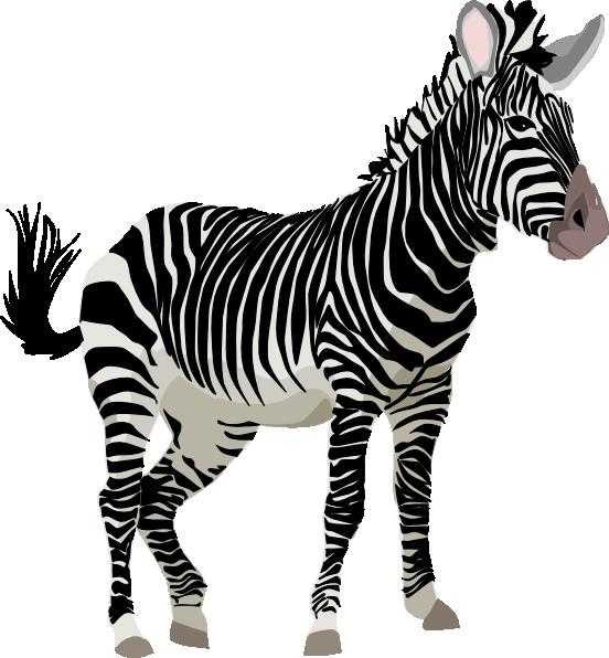 giraffe clipart zebra