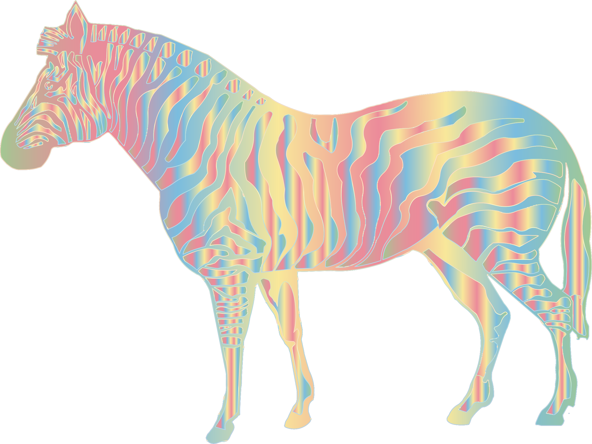 clipart zebra colorful zebra