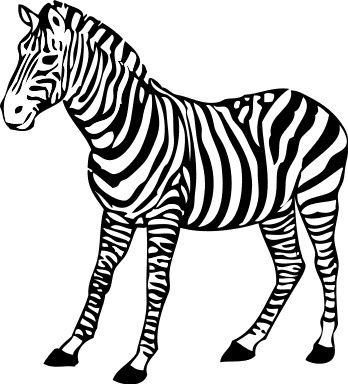 Realistic pages . Clipart zebra coloring page
