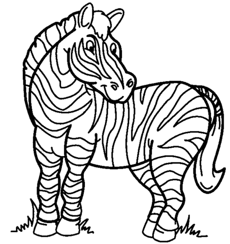 Free coloring pages download. Clipart zebra colouring page