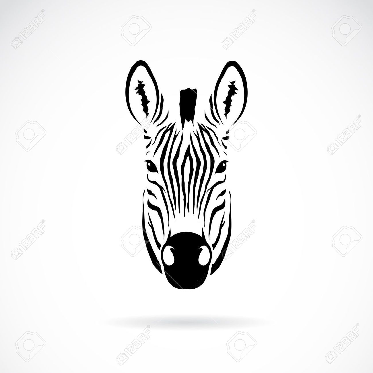 Head on google search. Clipart zebra front