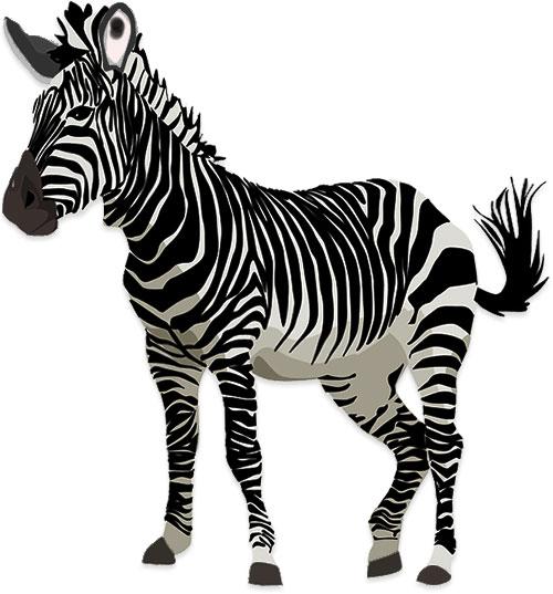 Clipart zebra front. Free graphics