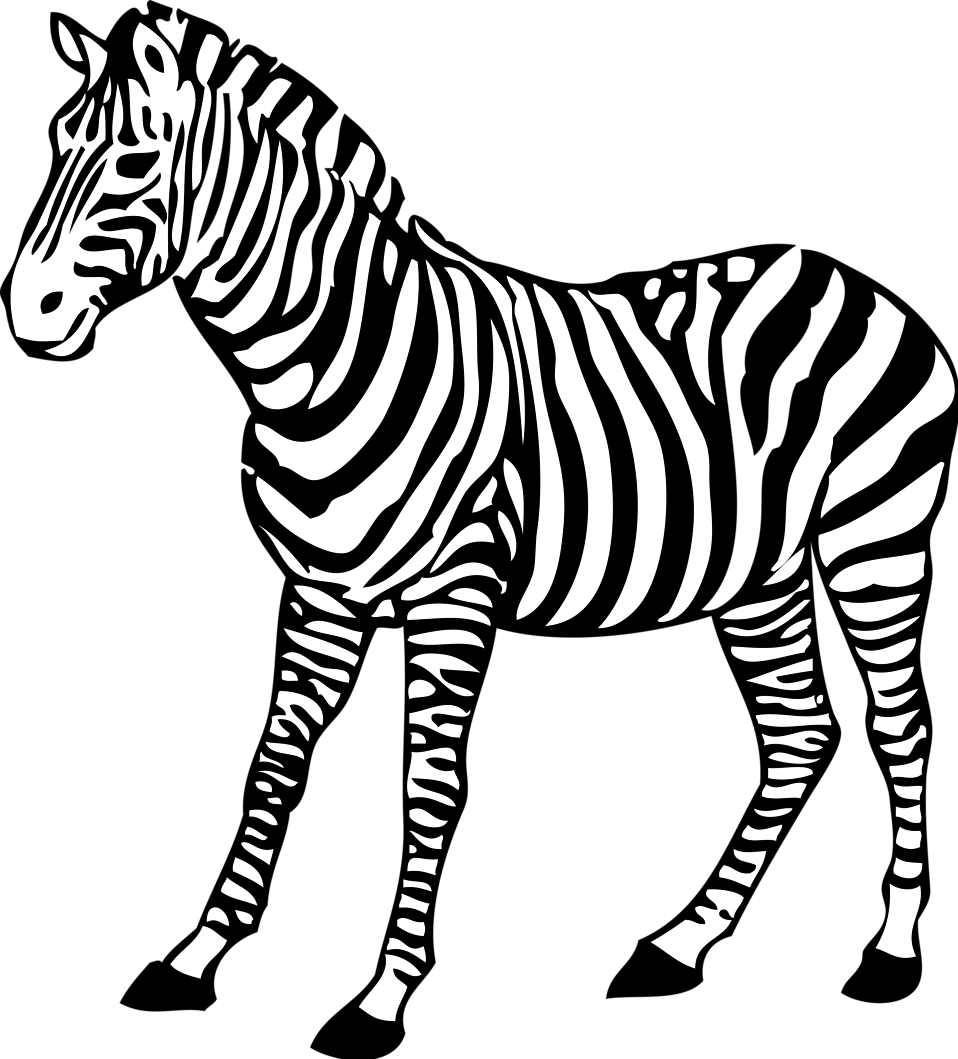 Clipart zebra illustration. Free stock photo of
