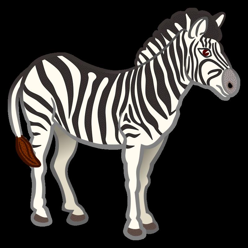 Coloured medium image png. Clipart zebra pichers