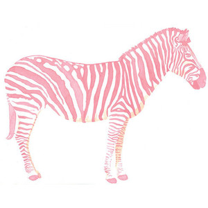 Animals clip art . Clipart zebra pink zebra