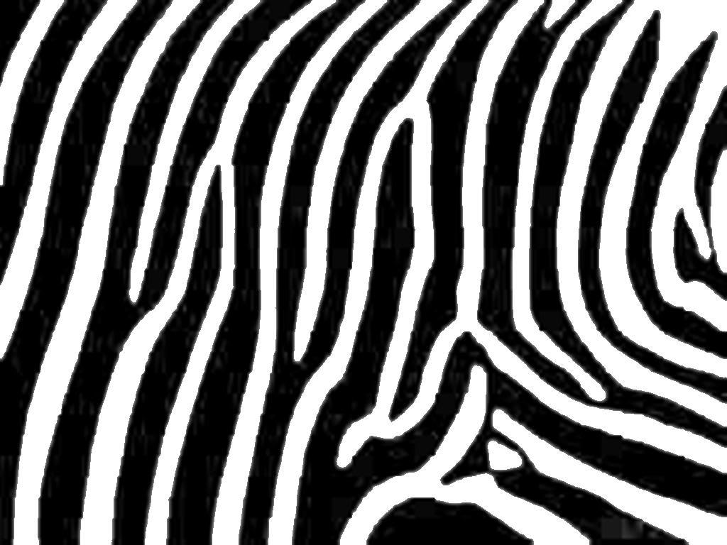 Free print cliparts download. Clipart zebra printable