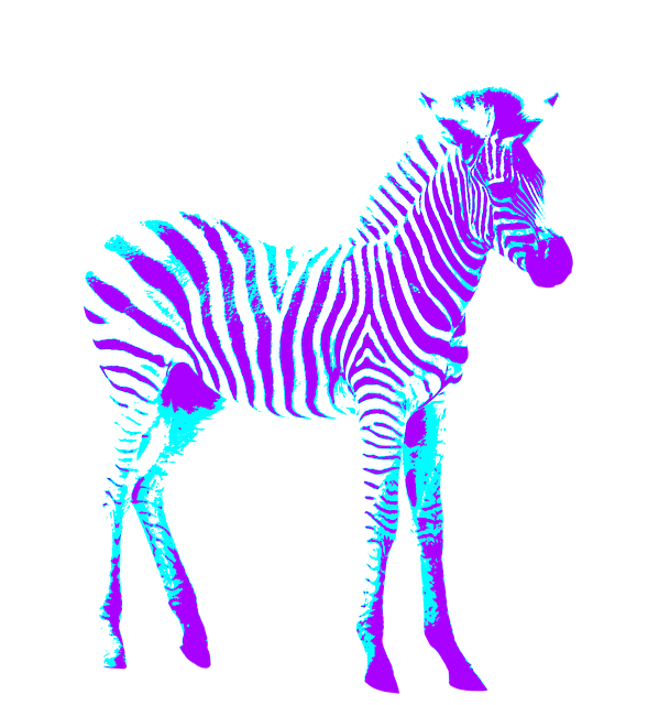 Free photo blue colorful. Clipart zebra purple zebra