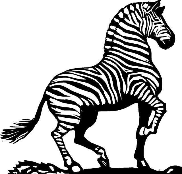 Silhouette face cartoon cute. Clipart zebra sketch