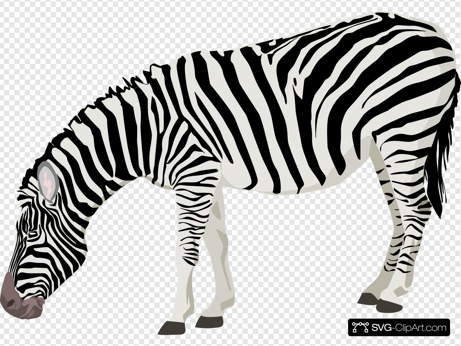 Grazing clip art icon. Clipart zebra svg