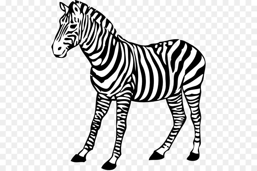 Clipart zebra wildlife. Cartoon drawing head transparent