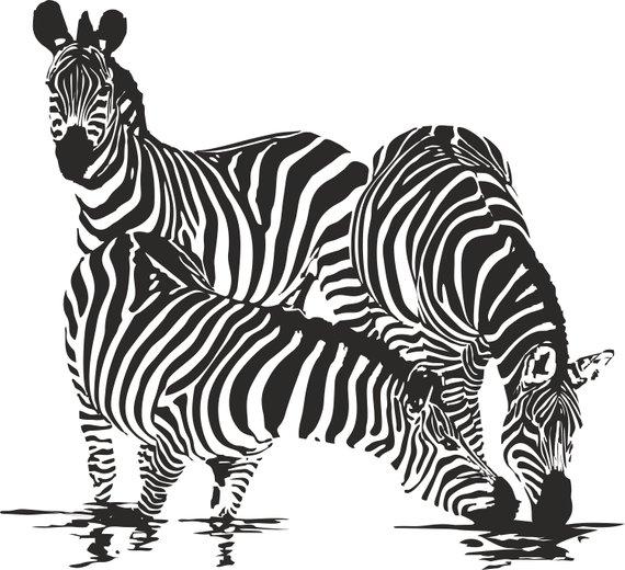 Clipart zebra wildlife. Svg files for cricut