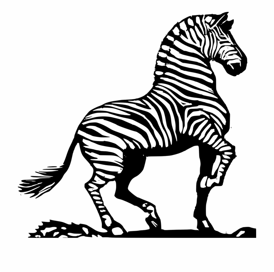 Clipart zebra zebra african. Animated library black and