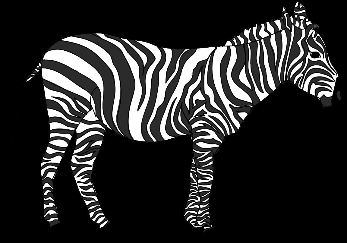 Buncee imagine a chase. Clipart zebra zebra herd