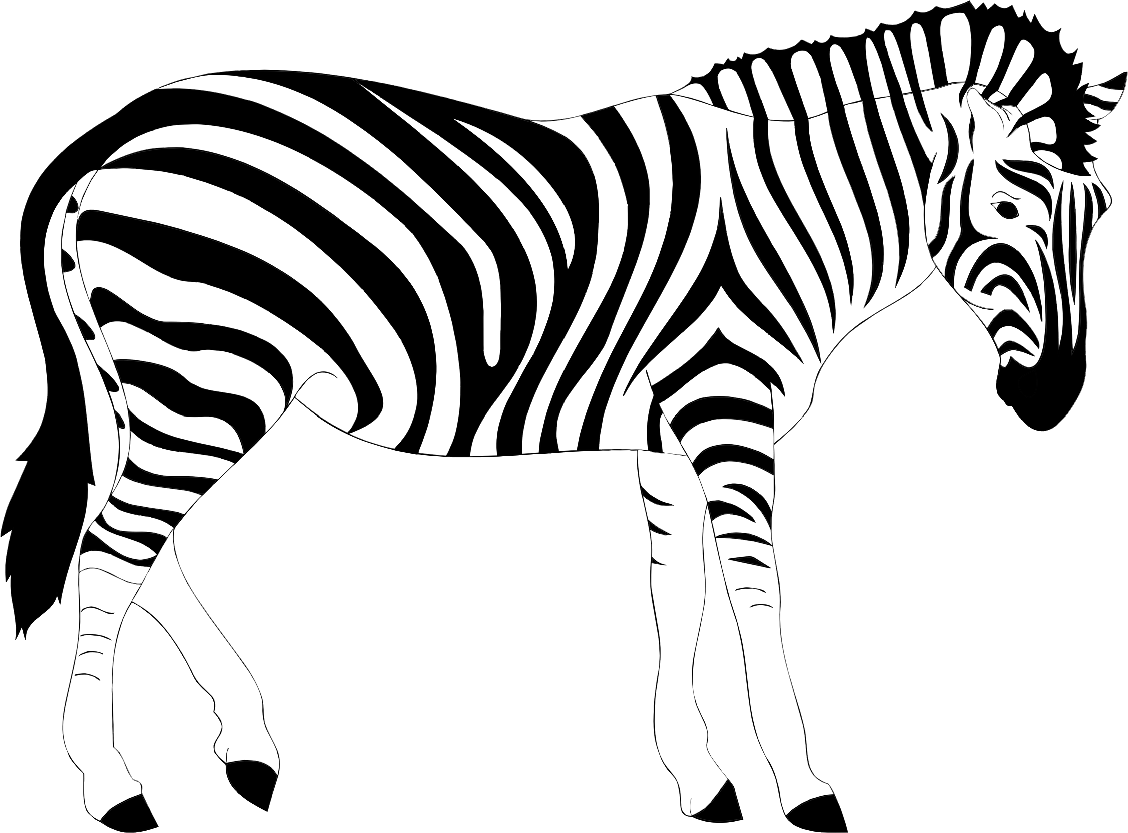 Images of spacehero top. Clipart zebra zebra outline