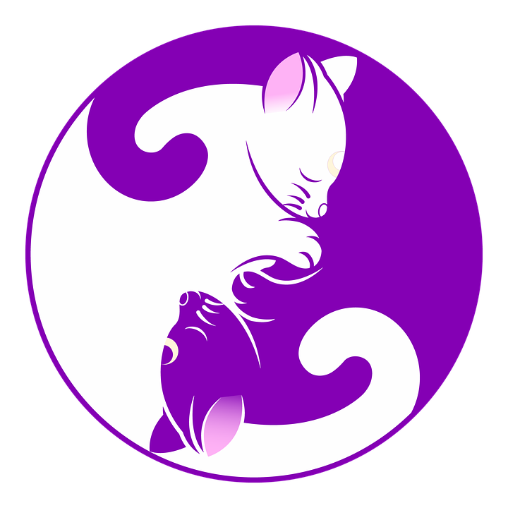 Kitten free collection download. Clock clipart purple