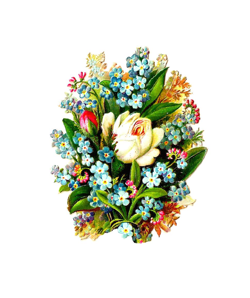 Flower bouquets garden flowers. Closet clipart bunch