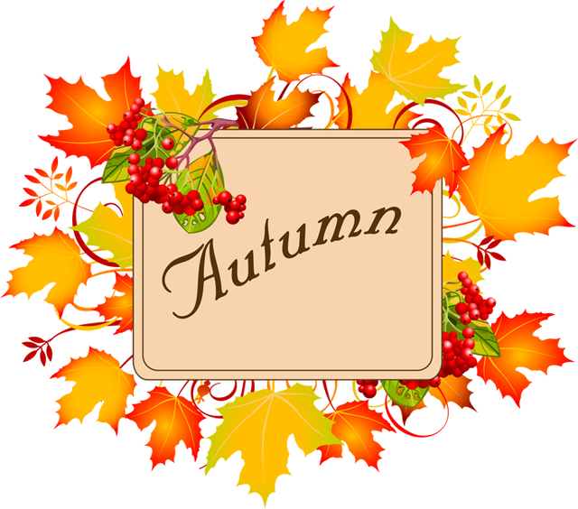 Exporting panda free images. Clothes clipart autumn