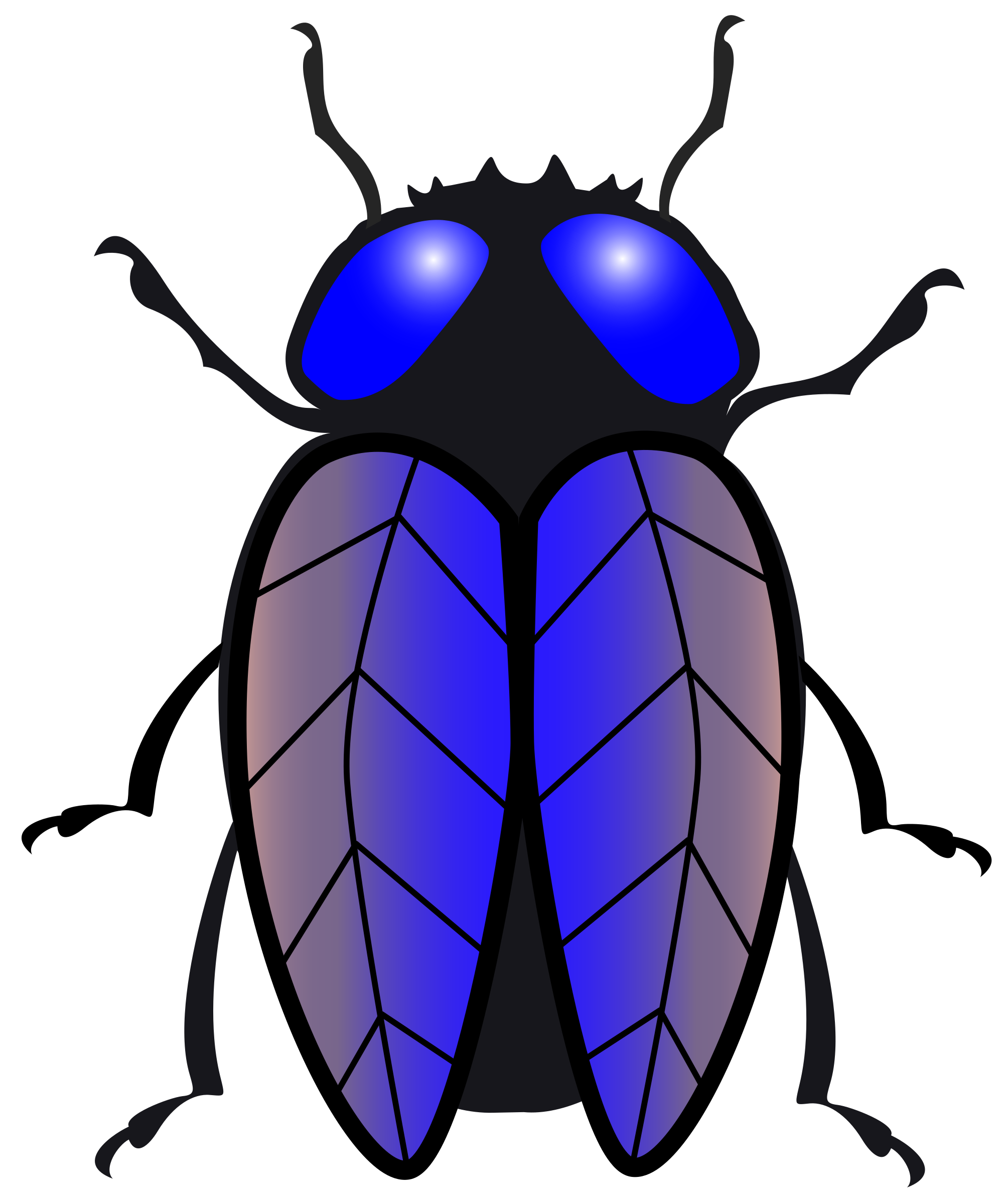 Of a black and. Purple clipart insect